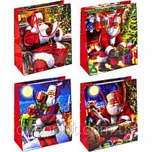 """Пакет """"Новогодний"""" средний,  21,5х18х8 см / Дед Мороз"""