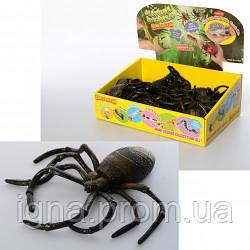 Насекомое A163-PDQ (96шт) паук, 17см, 24шт в дисплее, 29-20-7см