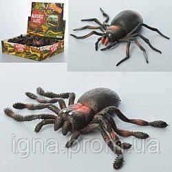 Комаха A123-DB (96шт) павук, 11см, 24шт(2 види) в дисплеї, 30-23-7,5 см