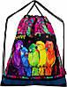Школьный ранец в 1-4 класс рюкзак для девочки в наборе сменка и пенал Попугайчики DeLune 10-004, фото 5