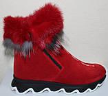 Ботинки женские замшевые зимние с натуральным мехом на толстой подошве от производителя модель УН518, фото 2