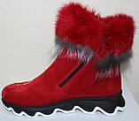 Ботинки женские замшевые зимние с натуральным мехом на толстой подошве от производителя модель УН518, фото 3