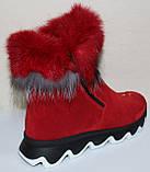 Ботинки женские замшевые зимние с натуральным мехом на толстой подошве от производителя модель УН518, фото 5