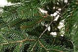 """Ялинка лита """"Ковалівська"""" Зелена 2,50м, фото 4"""