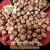 Фундук-лісовий горіх 15+ Азербайджан 3 кг сушений, фото 2