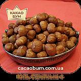 Фундук-лісовий горіх 15+ Азербайджан 3 кг сушений, фото 3