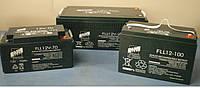 Аккумуляторная батарея FAAM серии FLL12-100