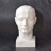 Обрубовка головы человека для рисования и скульптуры