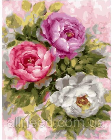 Картина по номерам Три пионовидные розы