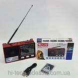 Портативная колонка с аккумулятором Golon RX-8866, радиоприемник, фото 2