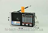 Портативна колонка з акумулятором Golon RX-8866, радіоприймач, фото 4