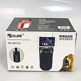 Радиоприемник RX 27, зарядка от солнца, читает флешку, AUX, Bluetooth, фото 4