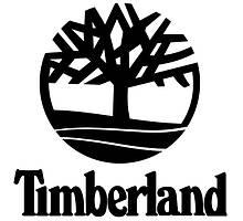 Зимние Timberland