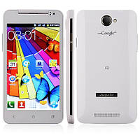 Smart Phone MTK6517 Dual Core Android 4.0 FM WiFi 5.0 Inch 4GB TF Card- White