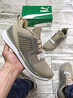 Чоловічі кросівки Puma Ignite