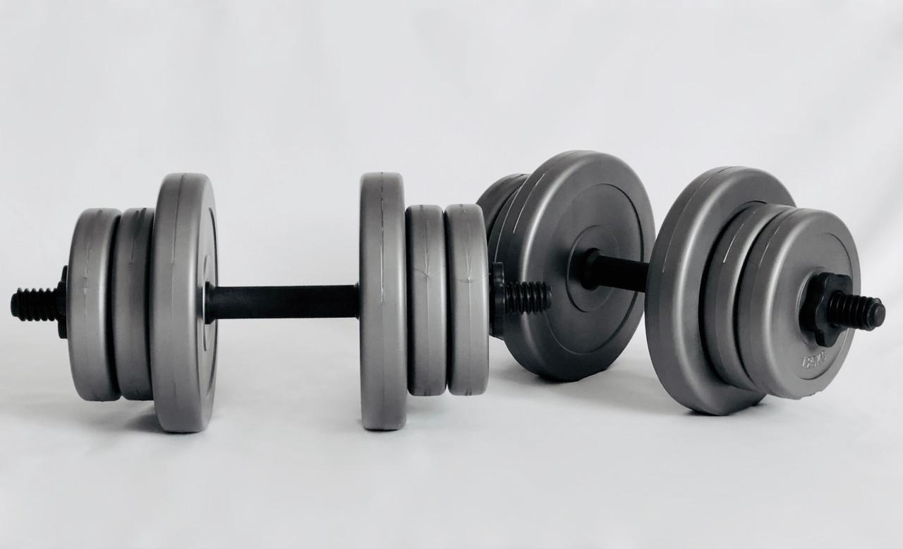 Гантели WCG 2х10 кг Серые (310.001.002)