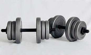 Гантели WCG 2х10 кг Серые (310.001.002), фото 2