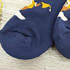 Носки мужские махровые средние новогодние GRAND 27-29р синие, фото 6