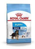 Royal Canin (Роял Канин) MAXI PUPPY корм для щенков в возрасте от 2 до 15 месяцев 15кг