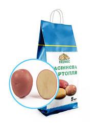 Семенной картофель сорт ORLA  (пакет 5 кг)