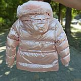 Зимняя куртка для девочки Розовый перламутр р. 146, фото 2