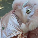 Зимняя куртка для девочки Розовый перламутр р. 146, фото 6