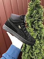 Мужские замшевые кроссовки Puma Suede чёрные на чёрной подошве, фото 1