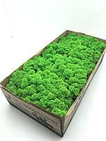 Стабилизированный норвежский мох высшего качества на солевой основе SO Green цвет салатовый 0,5 кг (№79)