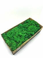 Стабилизированный норвежский мох высшего качества на солевой основе SO Green цвет темно-зеленый 0,5 кг (№78)