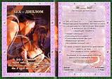 Диплом Секс - диплом / серия для взрослых, фото 2