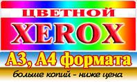 Цветной цифровой ксерокс в Днепре