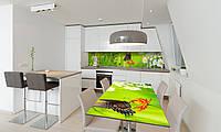 Наклейка 3Д виниловая на стол Zatarga «Бабочка 02» 600х1200 мм для домов, квартир, столов, кофейн, кафе, фото 1