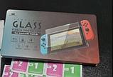 Закаленное защитное стекло Data Frog для Nintendo Switch Lite / Есть чехлы, фото 2