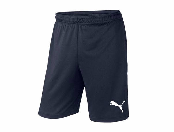 Мужские спортивные шорты Puma, пума, темно-синие (в стиле), фото 2