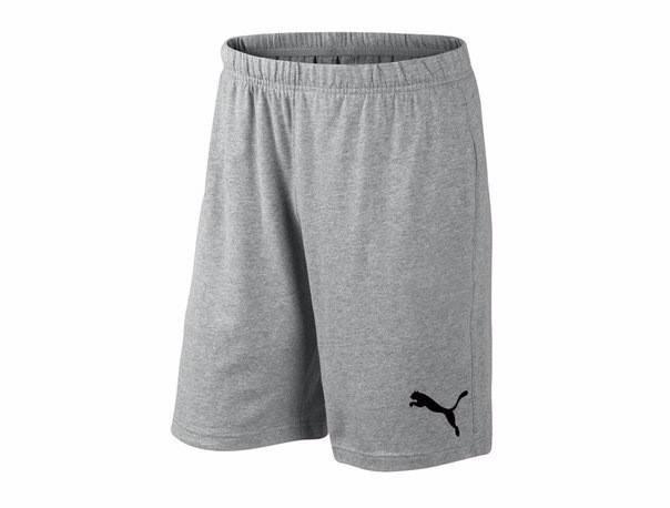 Мужские спортивные шорты Puma, пума, серые (в стиле), фото 2