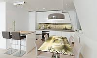 Наклейка 3Д виниловая на стол Zatarga «Лебеди» 650х1200 мм для домов, квартир, столов, кофейн, кафе, фото 1