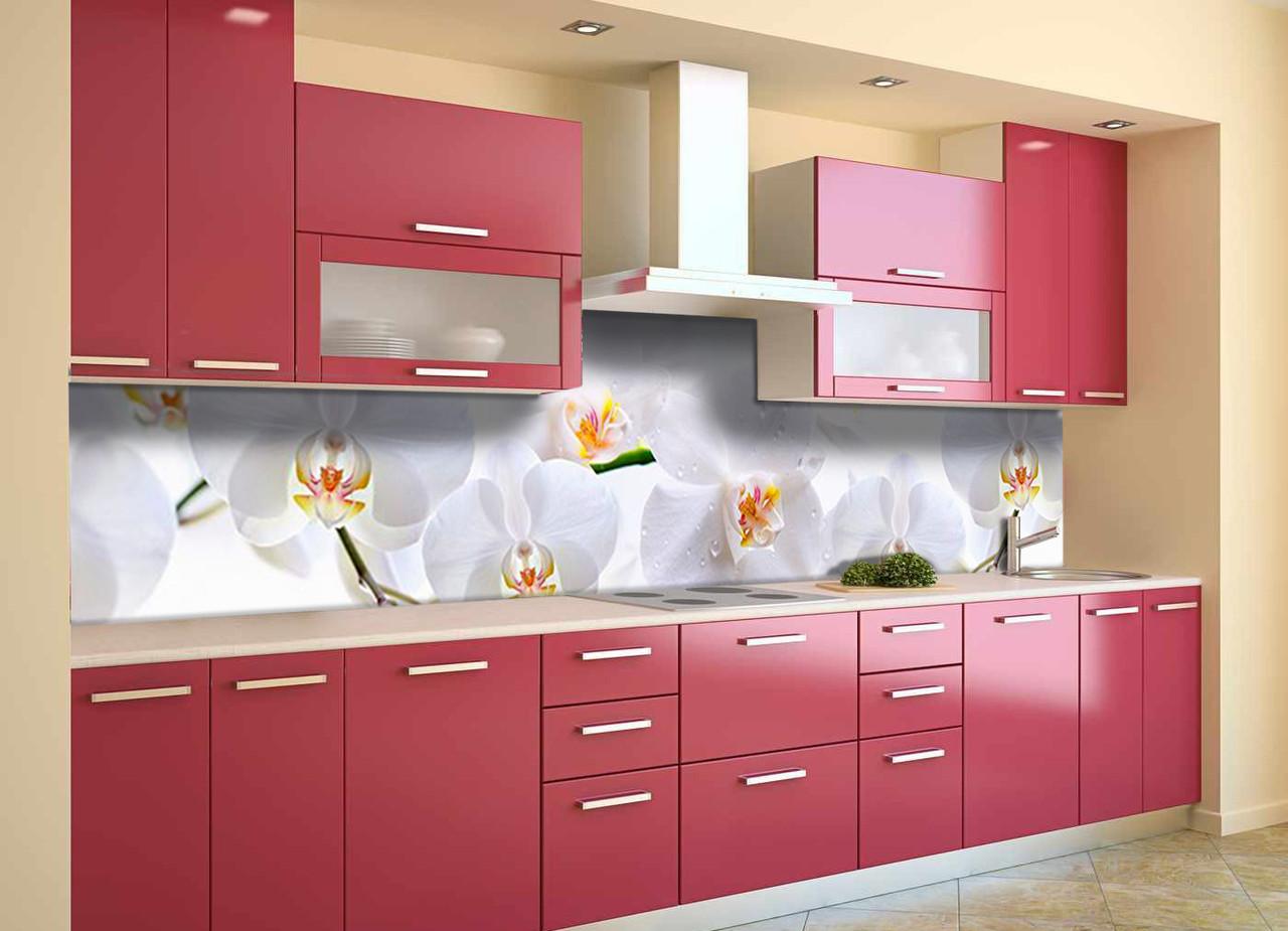 Скинали на кухню Zatarga «Нежные белые Орхидеи» 650х2500 мм виниловая 3Д наклейка кухонный фартук
