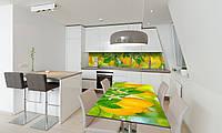 Наклейка 3Д виниловая на стол Zatarga «Лимоны» 600х1200 мм для домов, квартир, столов, кофейн, кафе, фото 1