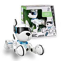 Интерактивная собака робот для ребенка TELECONTROL LEIDY DOG. Умная собака робот.