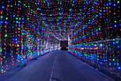 Гирлянда наружная Штора светодиодная, 150 LED, Мультицветная, флеш с мерцанием, черный провод, 3х1м., фото 3