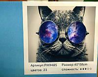 """Картина-раскраска по номерам на холсте 40*50 """"Кот в очках"""" (н-р акр.красок+3 кисти) РН9485"""