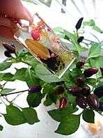 Кулон из ювелирной смолы с гипсофилой и мхом, фото 1
