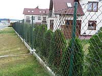 Забор из сетки рабица, фото 1