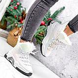 Ботинки женские Tizzar мульти ЗИМА 2648, фото 9