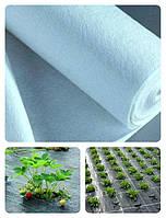 Агроволокно укрывное белое (ширина 3,2 м , плотность 23 г/м² )