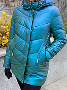 Куртка зимняя короткая AnaVista 17-8, фото 5