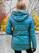 Куртка зимняя короткая AnaVista 17-8, фото 4