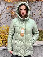 Куртка зимняя короткая AnaVista 17-23, фото 6
