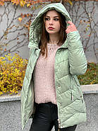 Куртка зимняя короткая AnaVista 17-23, фото 2