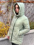 Куртка зимняя короткая AnaVista 17-23, фото 3